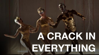 A Crack in Everything - OntheBoards.tv | Thespie
