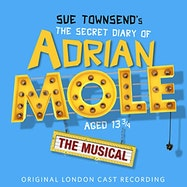 The Secret Diary of Adrian Mole Aged 13 3/4 - Spotify | Thespie