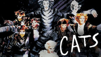 Cats (1998) - Prime Video | Thespie