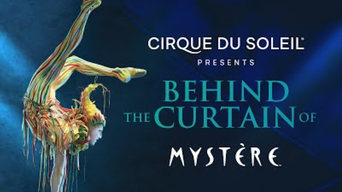 Cirque du Soleil - Behind the Curtain of Mystere - YouTube | Thespie