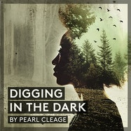 Digging in the Dark - Spotify | Thespie