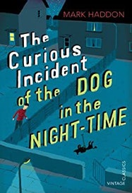 The Curious Incident of the Dog in the Night-time - Kindle | Thespie