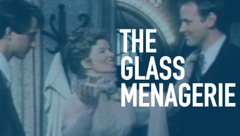 The Glass Menagerie - STAGE | Thespie