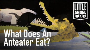 What Does An Anteater Eat? - YouTube | Thespie