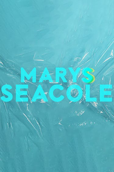 Marys Seacole Tickets London - at Donmar Warehouse   Thespie