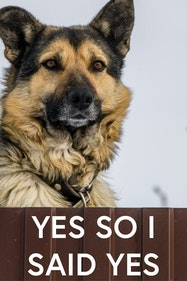 Yes So I Said Yes Tickets London - at Finborough Theatre   Thespie